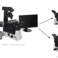 Tweez300高速多光阱纳米光镊与测力平台